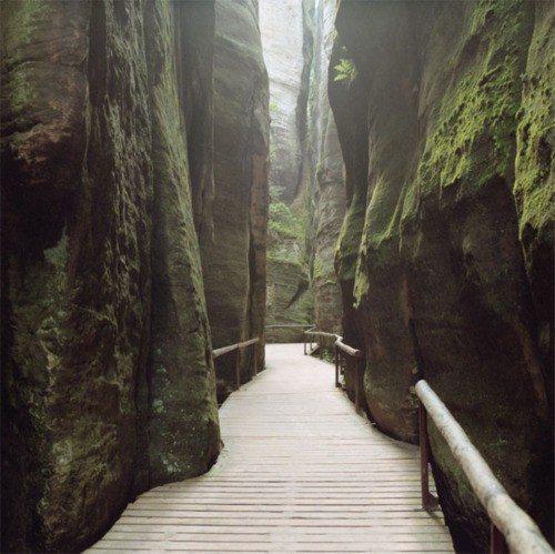 Mossy Passage
